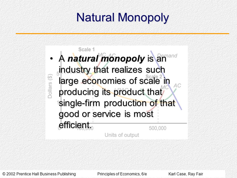 © 2002 Prentice Hall Business PublishingPrinciples of Economics, 6/eKarl Case, Ray Fair Natural Monopoly A natural monopoly is an industry that realizes such large economies of scale in producing its product that single-firm production of that good or service is most efficient.A natural monopoly is an industry that realizes such large economies of scale in producing its product that single-firm production of that good or service is most efficient.