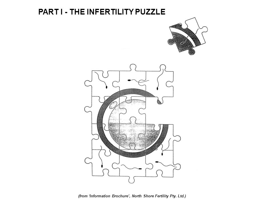 PART I - THE INFERTILITY PUZZLE (from Information Brochure, North Shore Fertility Pty. Ltd.)