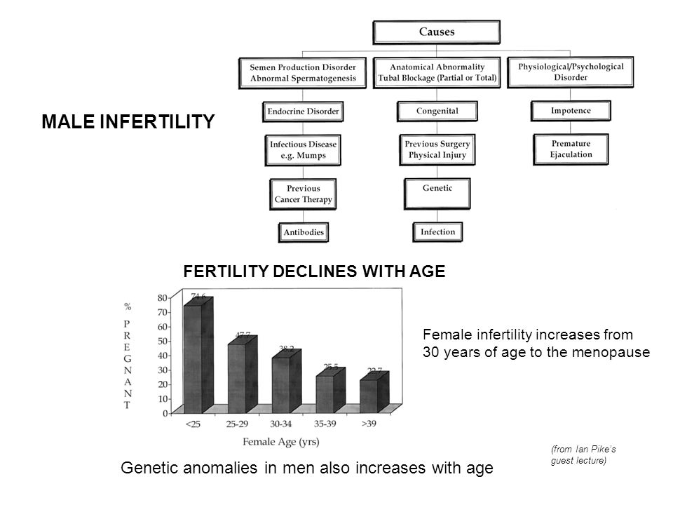 MALE INFERTILITY FERTILITY DECLINES WITH AGE Female infertility increases from 30 years of age to the menopause Genetic anomalies in men also increase
