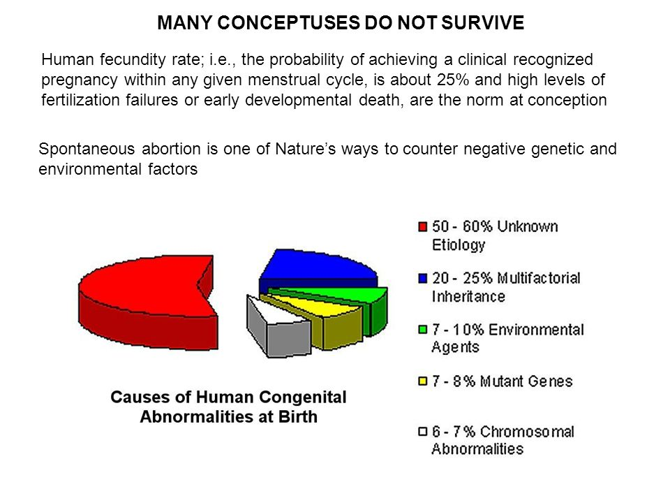 MANY CONCEPTUSES DO NOT SURVIVE Human fecundity rate; i.e., the probability of achieving a clinical recognized pregnancy within any given menstrual cy