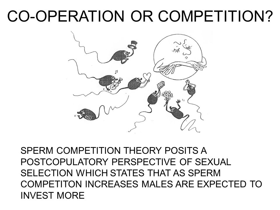 CO-OPERATION OR COMPETITION.