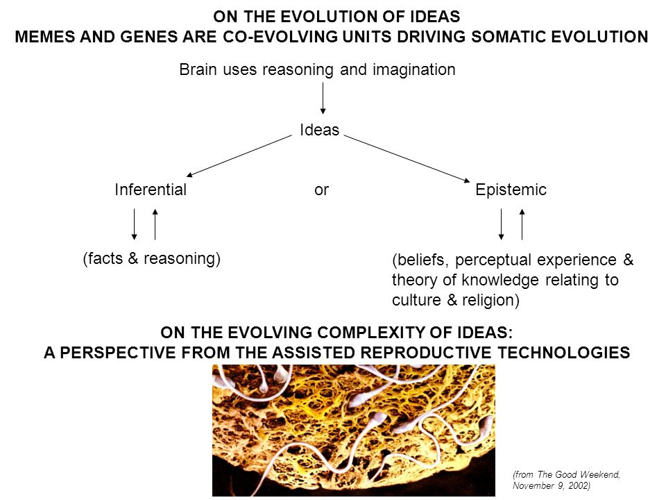 ON THE EVOLUTION OF IDEAS MEMES AND GENES ARE CO-EVOLVING UNITS DRIVING SOMATIC EVOLUTION Brain uses reasoning and imagination Ideas Inferentialor Epistemic (facts & reasoning) (beliefs, perceptual experience & theory of knowledge relating to culture & religion) ON THE EVOLVING COMPLEXITY OF IDEAS: A PERSPECTIVE FROM THE ASSISTED REPRODUCTIVE TECHNOLOGIES (from The Good Weekend, November 9, 2002)