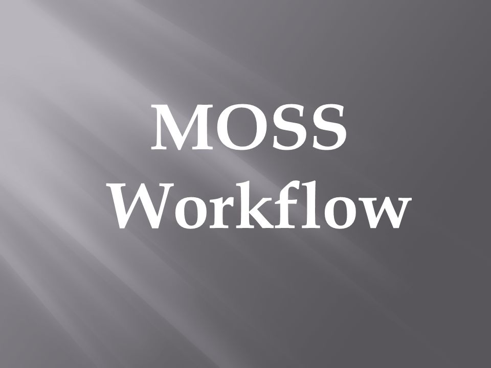 MOSS Workflow