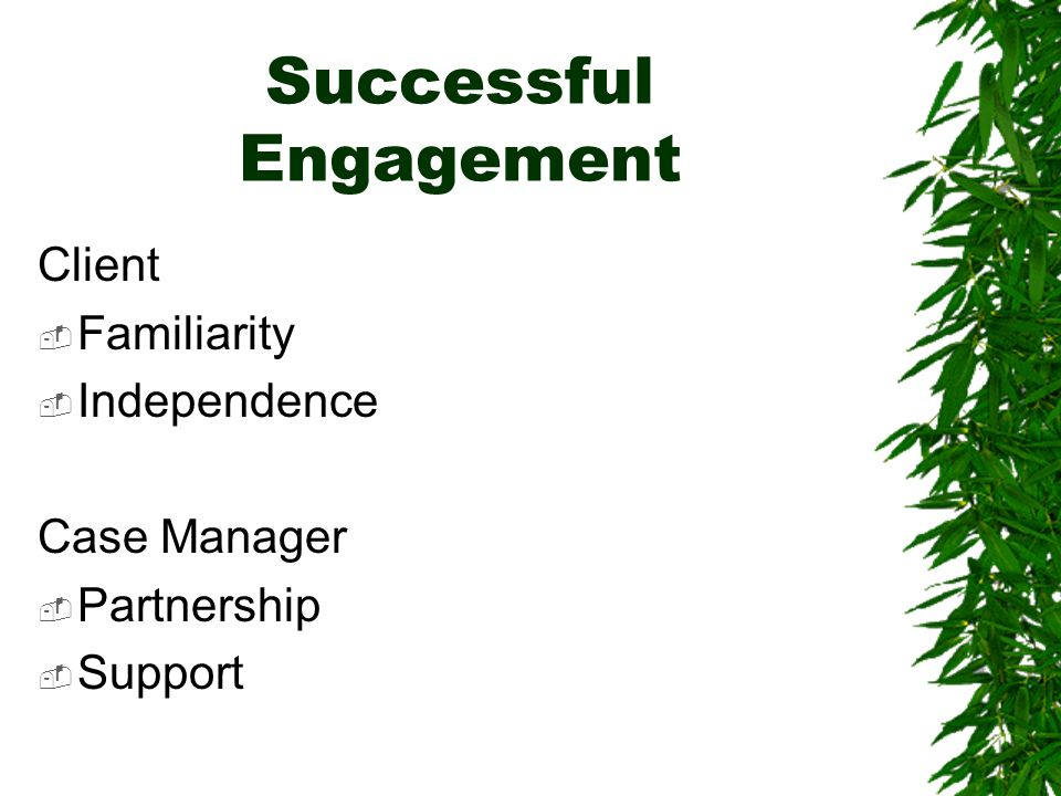 Successful Engagement Client Familiarity Independence Case Manager Partnership Support