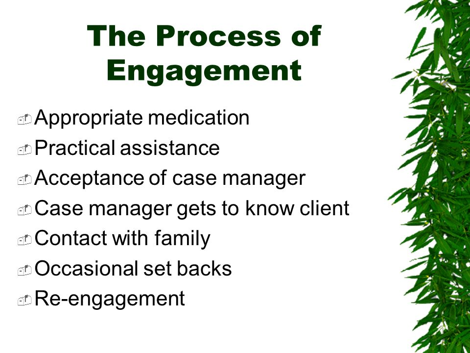 The Process of Engagement Appropriate medication Practical assistance Acceptance of case manager Case manager gets to know client Contact with family