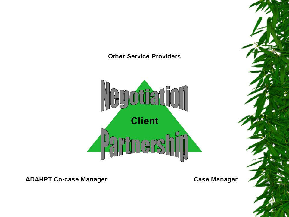 ADAHPT Co-case ManagerCase Manager Other Service Providers Client