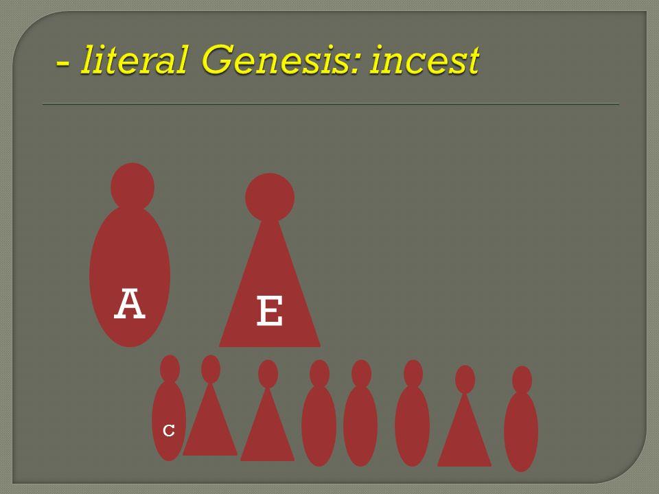 A E C