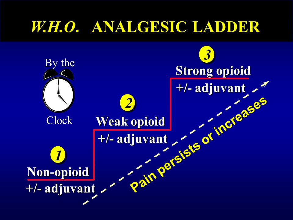 +/- adjuvant Non-opioid Weak opioid Strong opioid Pain persists or increases By the Clock W.H.O.