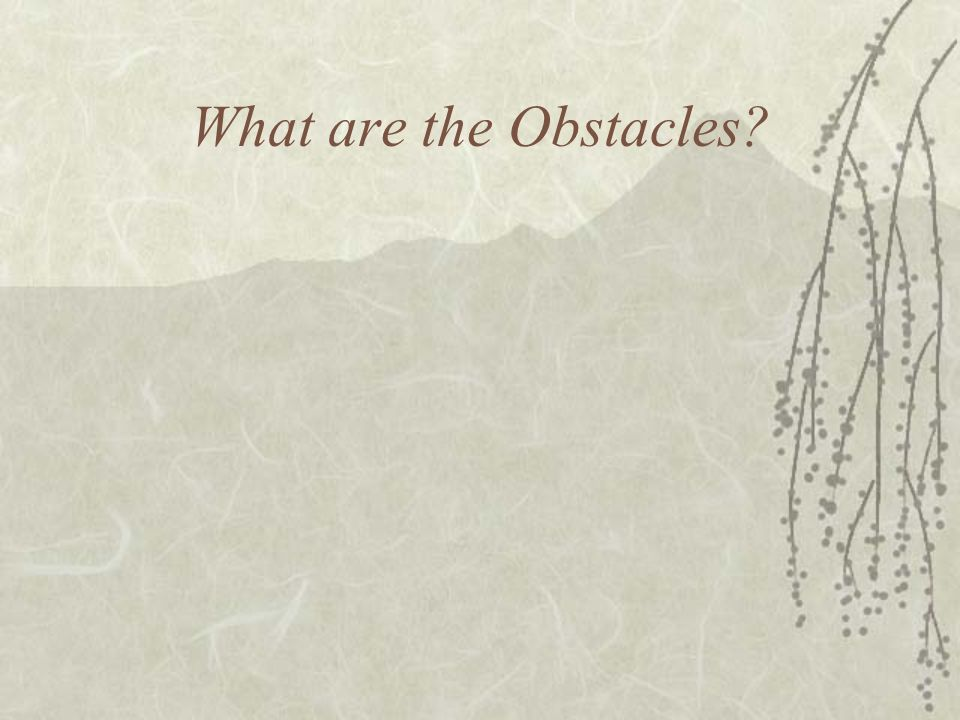 What are the Obstacles?