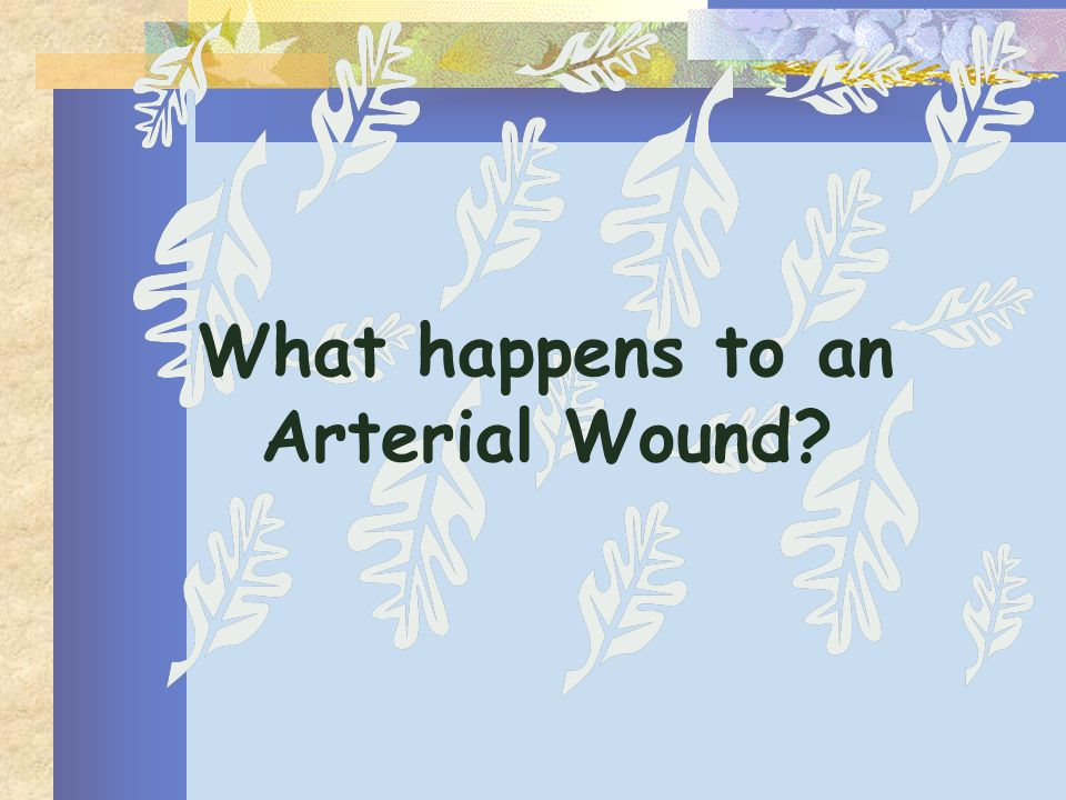 What happens to an Arterial Wound?