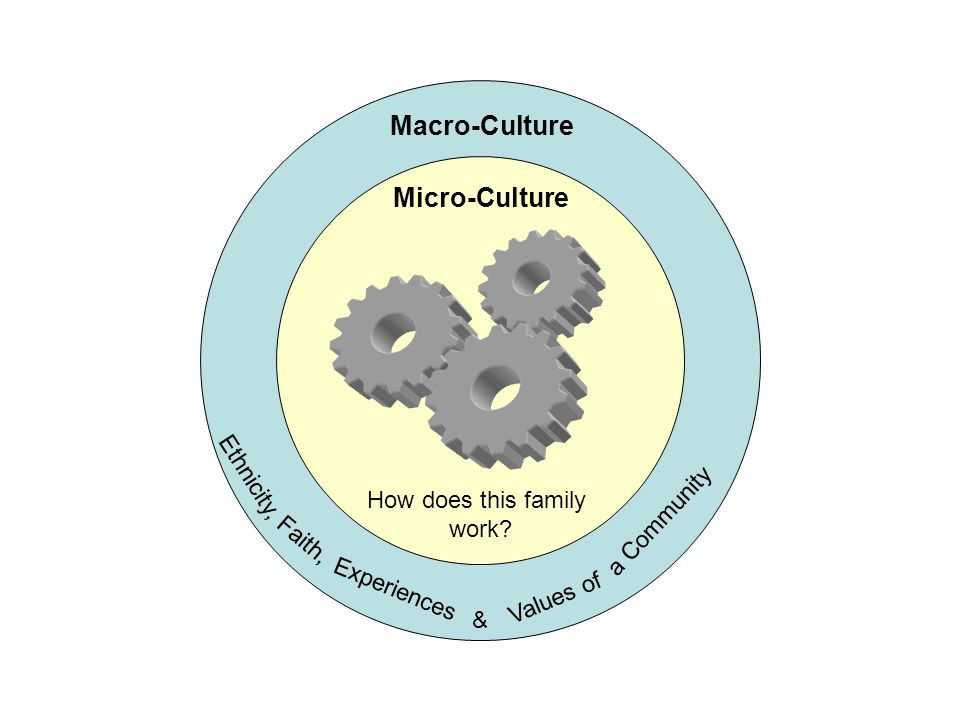 Macro-Culture Experiences Ethnicity, Faith, Values of a Community & Micro-Culture How does this family work?