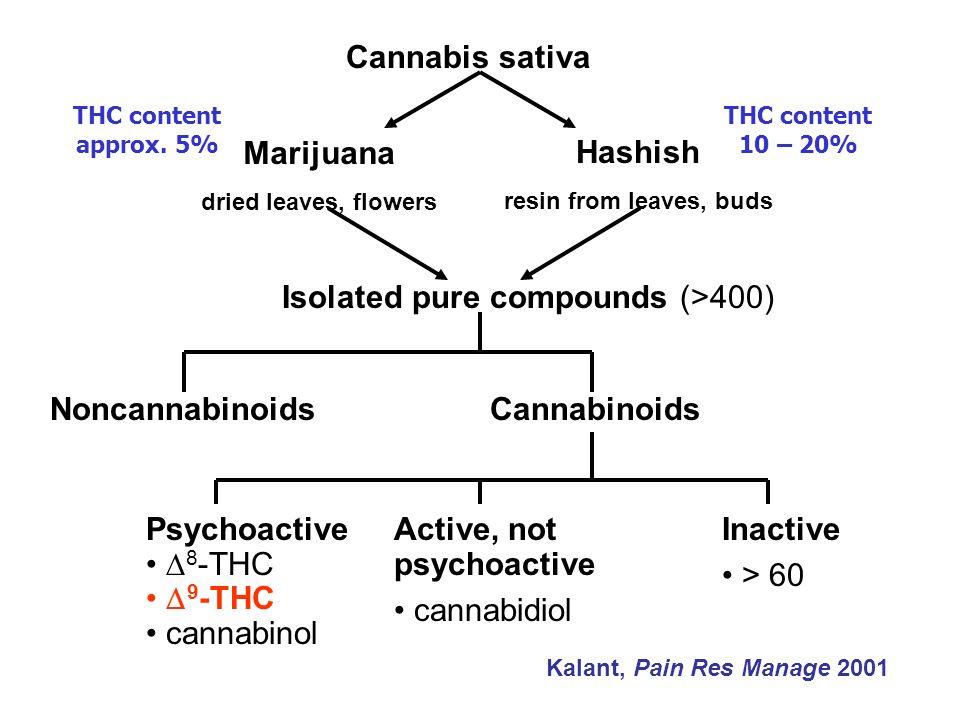 Cannabis sativa Marijuana dried leaves, flowers Hashish resin from leaves, buds Isolated pure compounds (>400) NoncannabinoidsCannabinoids Psychoactiv