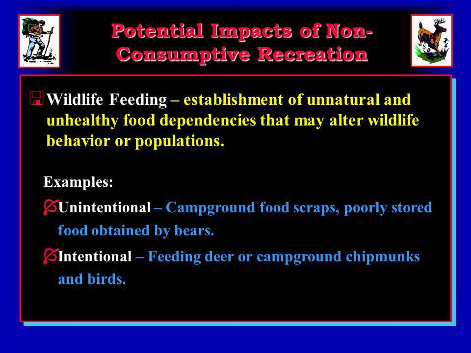 Potential Impacts of Non- Consumptive Recreation < Wildlife Feeding – establishment of unnatural and unhealthy food dependencies that may alter wildlife behavior or populations.