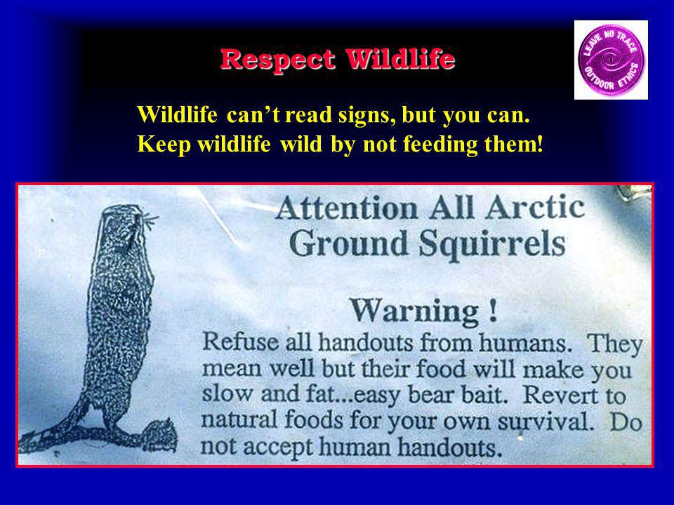Respect Wildlife Wildlife cant read signs, but you can. Keep wildlife wild by not feeding them!