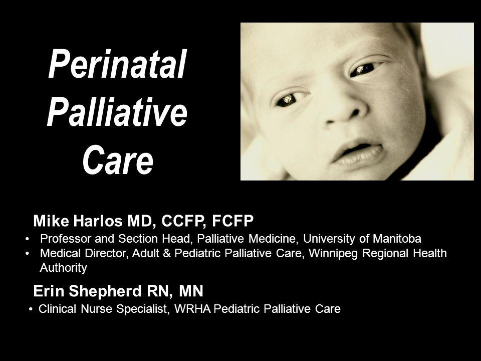 Perinatal Palliative Care Professor and Section Head, Palliative Medicine, University of Manitoba Medical Director, Adult & Pediatric Palliative Care,