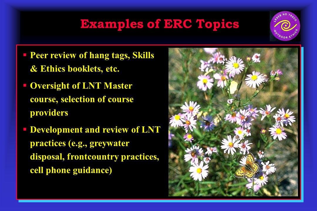 Examples of ERC Topics Peer review of hang tags, Skills & Ethics booklets, etc.