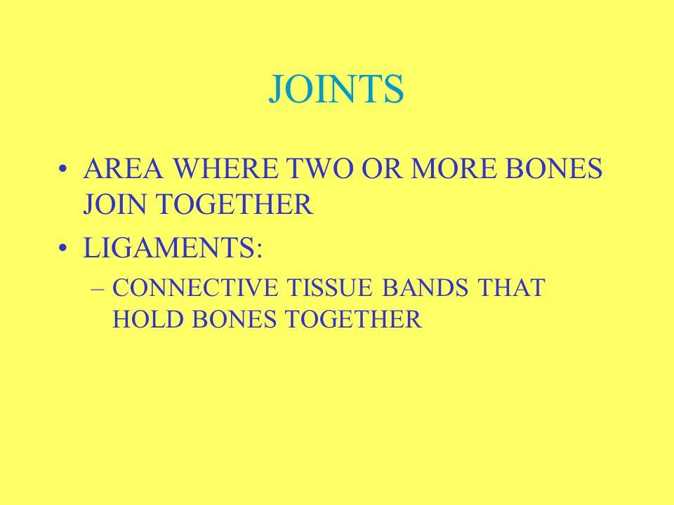 TARSALS: 7 BONES OF ANKLES, CALCANEOUS IS HEEL BONE METATARSALS: 5 BONES FORMING INSTEP OF FOOT PHALANGES: 14 BONES ON EACH FOOT, FORM TOES
