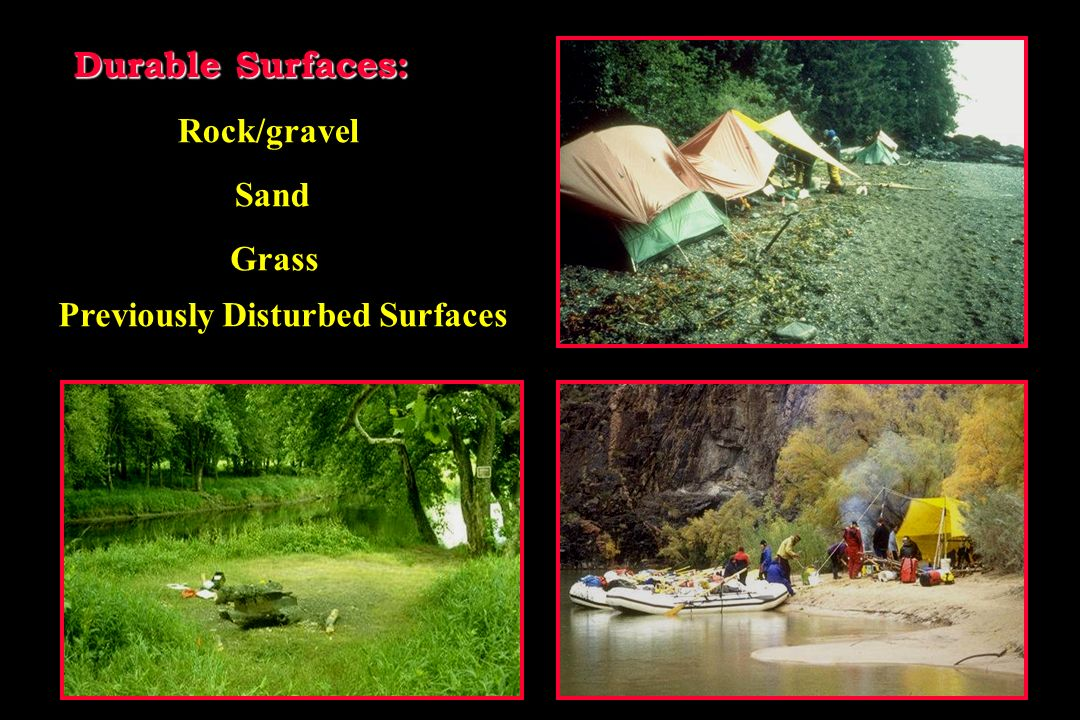 Camping Stay on established resistant sites.