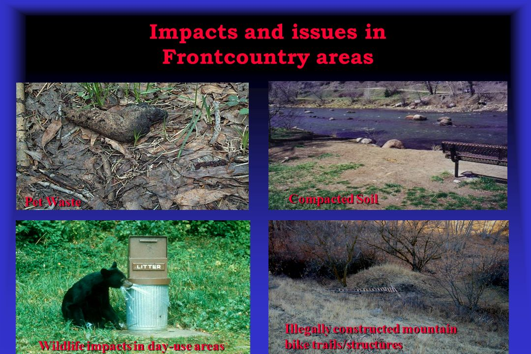 Impacts and issues in Frontcountry areas Pet Waste Compacted Soil Wildlife impacts in day-use areas Illegally constructed mountain bike trails/structu