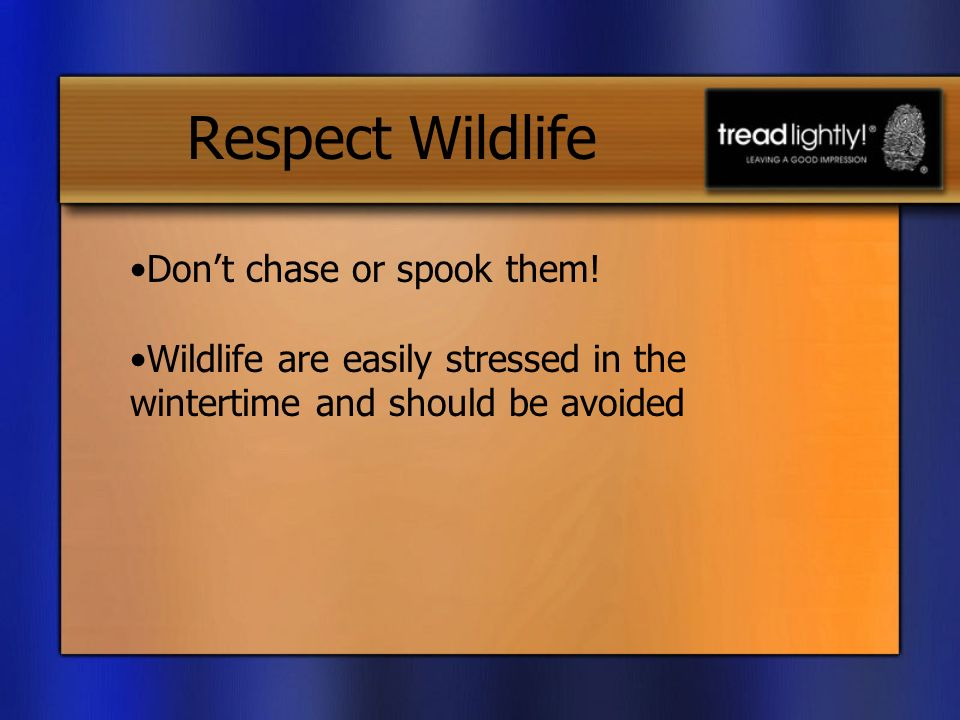 Respect Wildlife Dont chase or spook them.