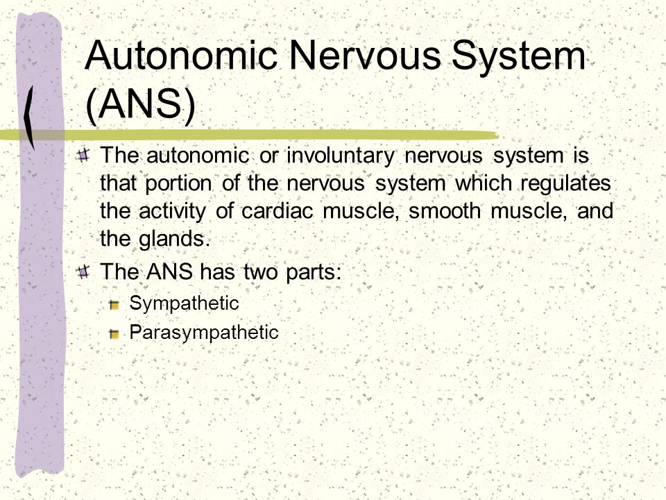 Autonomic Nervous System (ANS) The autonomic or involuntary nervous system is that portion of the nervous system which regulates the activity of cardi