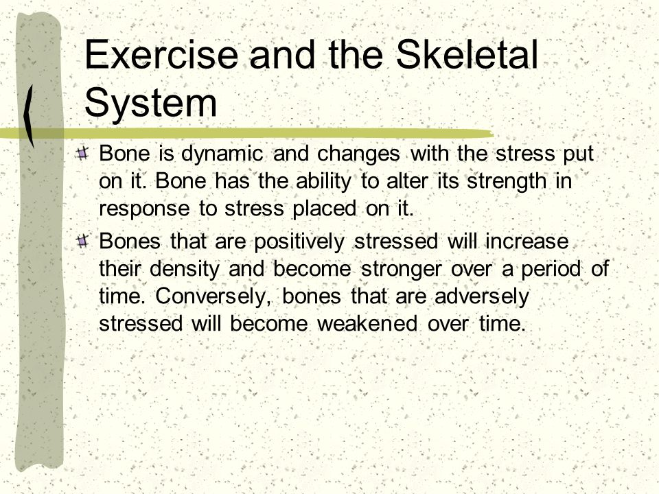 Exercise and the Skeletal System Bone is dynamic and changes with the stress put on it.