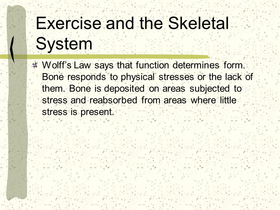 Exercise and the Skeletal System Wolffs Law says that function determines form.