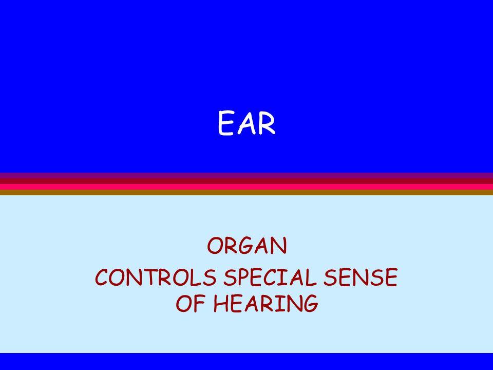 EAR ORGAN CONTROLS SPECIAL SENSE OF HEARING