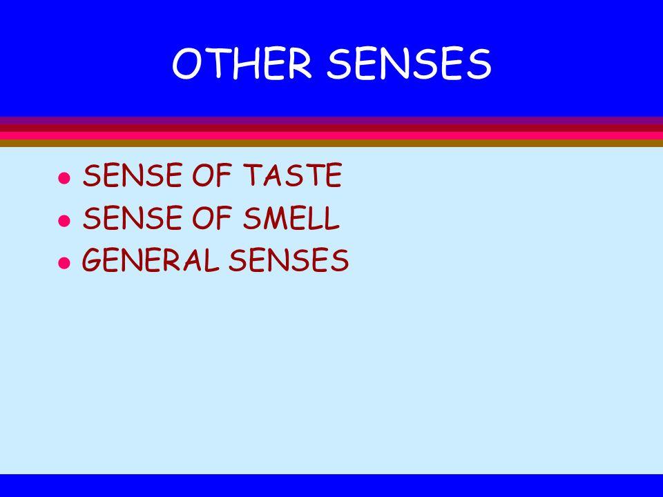 OTHER SENSES l SENSE OF TASTE l SENSE OF SMELL l GENERAL SENSES