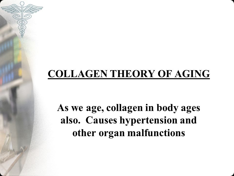 COLLAGEN THEORY OF AGING As we age, collagen in body ages also. Causes hypertension and other organ malfunctions
