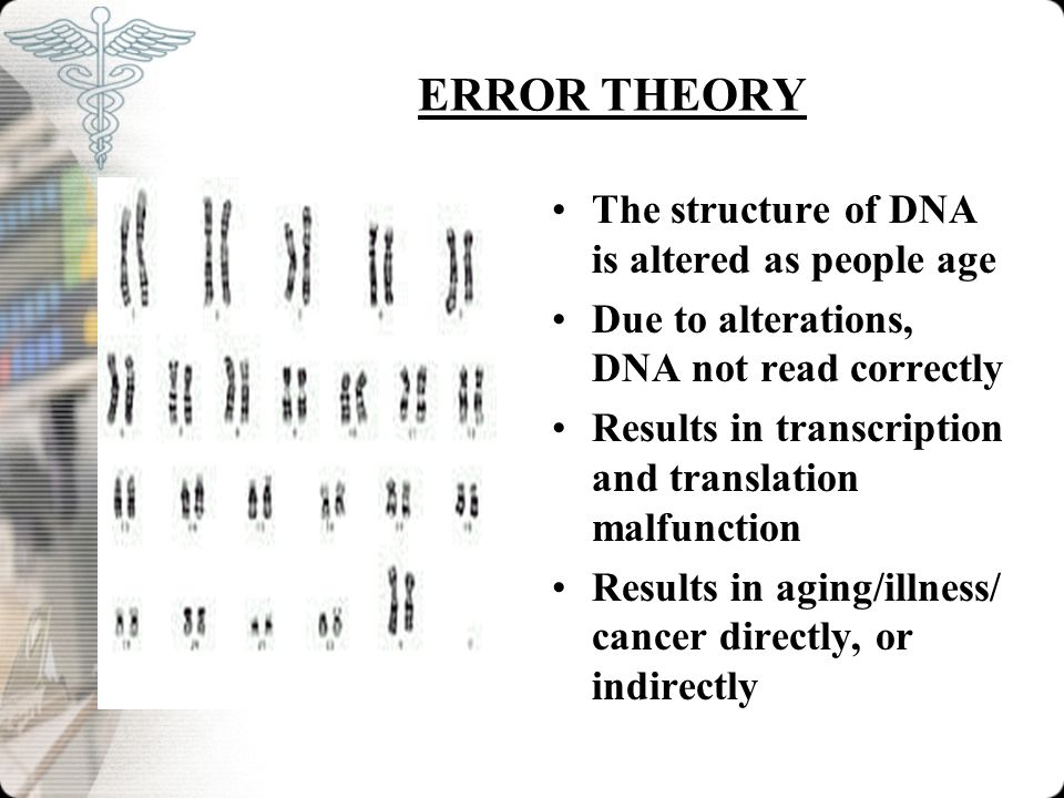 ERROR THEORY The structure of DNA is altered as people age Due to alterations, DNA not read correctly Results in transcription and translation malfunc