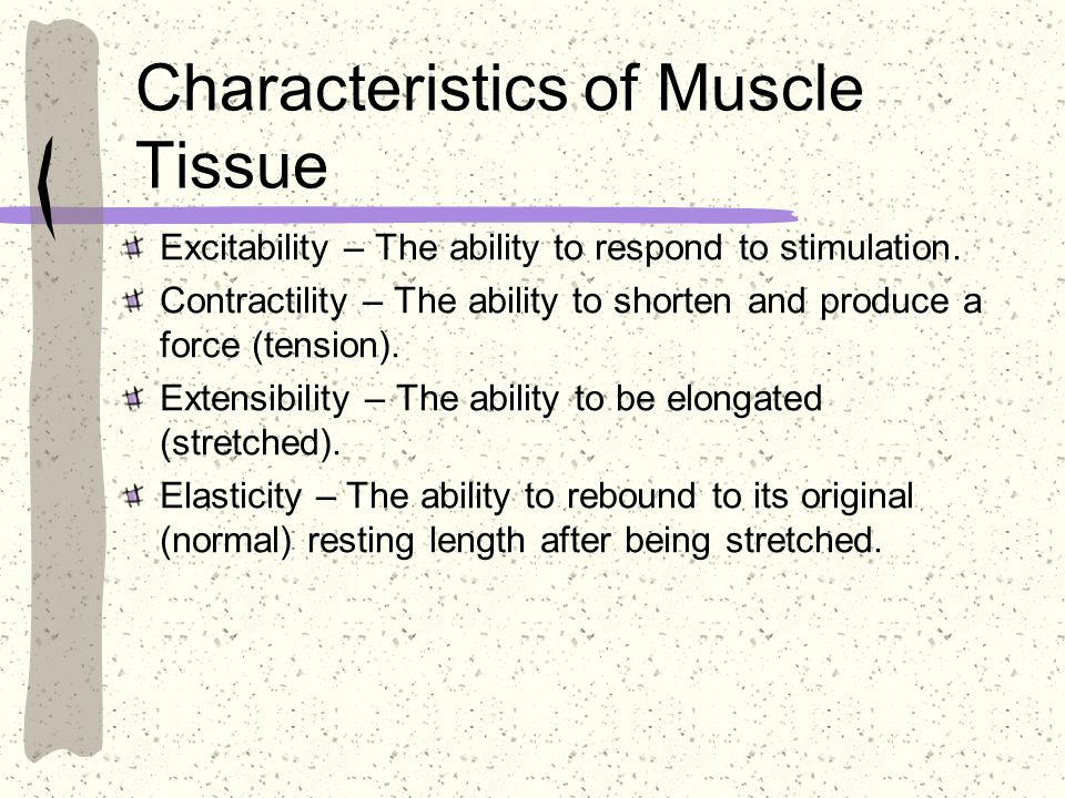 Characteristics of Muscle Tissue Excitability – The ability to respond to stimulation. Contractility – The ability to shorten and produce a force (ten