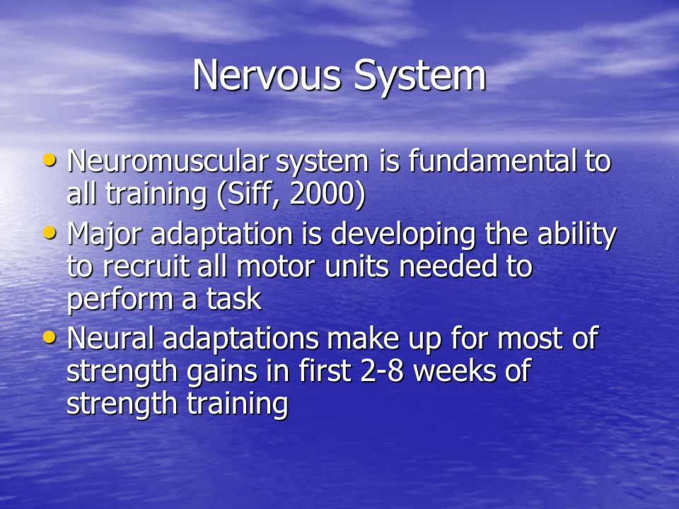 Nervous System Neuromuscular system is fundamental to all training (Siff, 2000) Neuromuscular system is fundamental to all training (Siff, 2000) Major