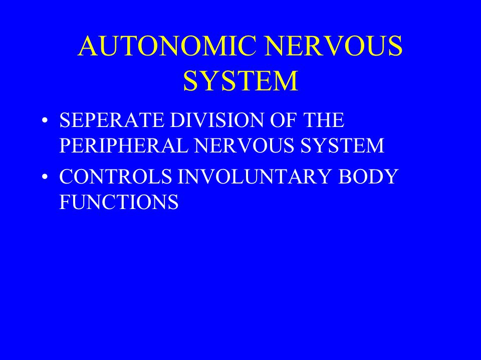 AUTONOMIC NERVOUS SYSTEM SEPERATE DIVISION OF THE PERIPHERAL NERVOUS SYSTEM CONTROLS INVOLUNTARY BODY FUNCTIONS