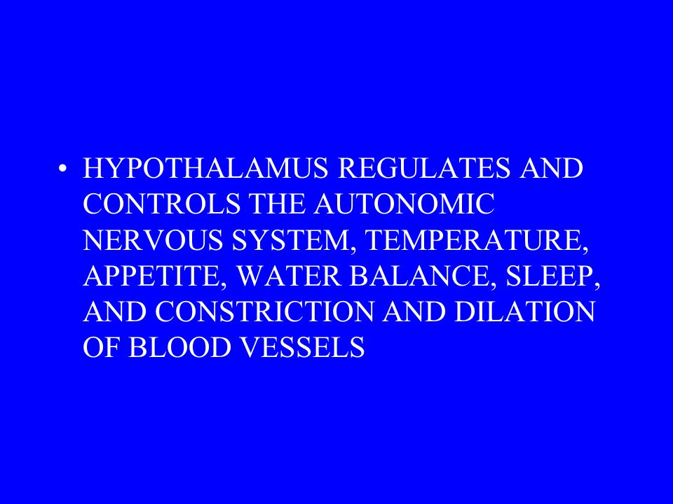HYPOTHALAMUS REGULATES AND CONTROLS THE AUTONOMIC NERVOUS SYSTEM, TEMPERATURE, APPETITE, WATER BALANCE, SLEEP, AND CONSTRICTION AND DILATION OF BLOOD VESSELS