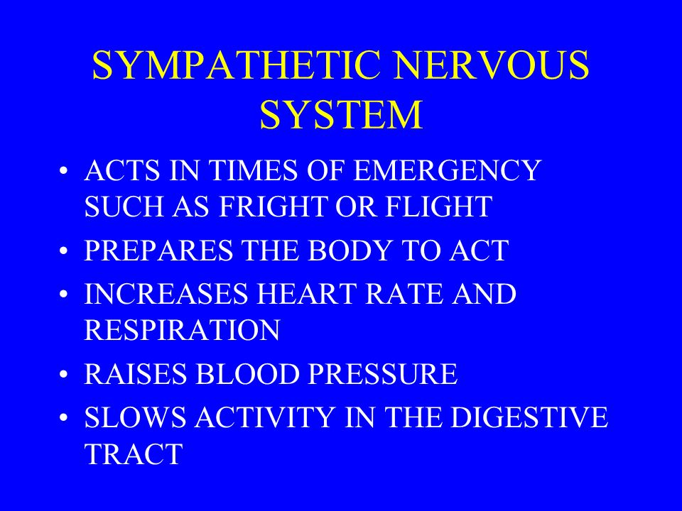 SYMPATHETIC NERVOUS SYSTEM ACTS IN TIMES OF EMERGENCY SUCH AS FRIGHT OR FLIGHT PREPARES THE BODY TO ACT INCREASES HEART RATE AND RESPIRATION RAISES BLOOD PRESSURE SLOWS ACTIVITY IN THE DIGESTIVE TRACT