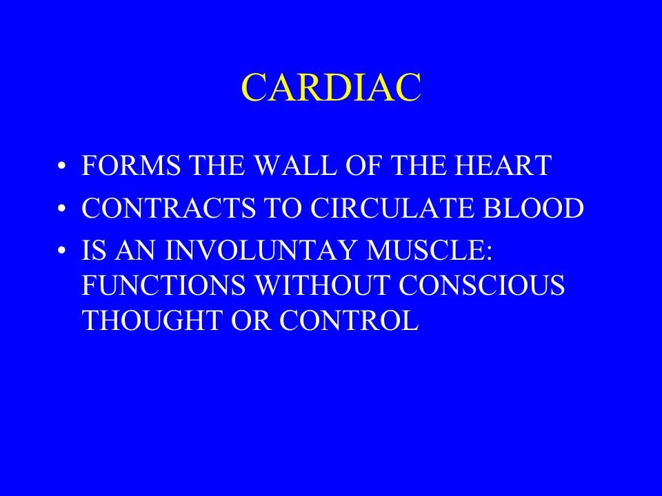 CARDIAC FORMS THE WALL OF THE HEART CONTRACTS TO CIRCULATE BLOOD IS AN INVOLUNTAY MUSCLE: FUNCTIONS WITHOUT CONSCIOUS THOUGHT OR CONTROL