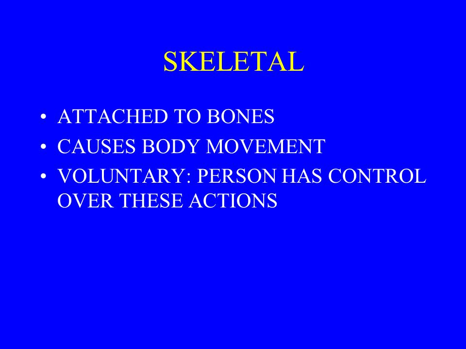 SKELETAL ATTACHED TO BONES CAUSES BODY MOVEMENT VOLUNTARY: PERSON HAS CONTROL OVER THESE ACTIONS