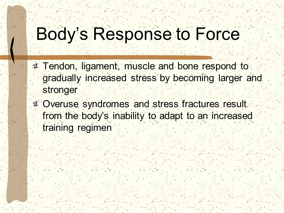 Bodys Response to Force Tendon, ligament, muscle and bone respond to gradually increased stress by becoming larger and stronger Overuse syndromes and