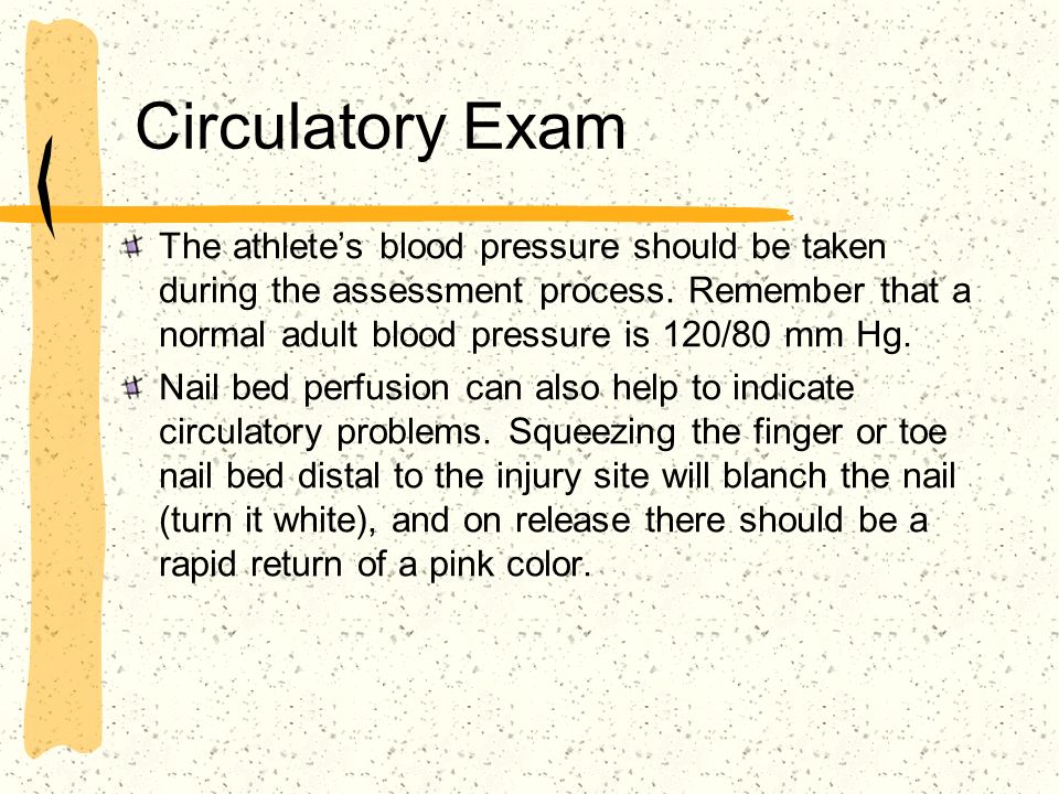 Circulatory Exam The athletes blood pressure should be taken during the assessment process. Remember that a normal adult blood pressure is 120/80 mm H