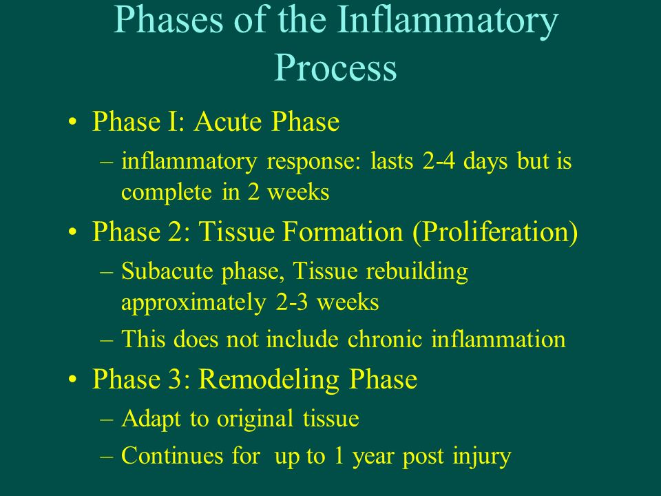 Phases of the Inflammatory Process Phase I: Acute Phase –inflammatory response: lasts 2-4 days but is complete in 2 weeks Phase 2: Tissue Formation (Proliferation) –Subacute phase, Tissue rebuilding approximately 2-3 weeks –This does not include chronic inflammation Phase 3: Remodeling Phase –Adapt to original tissue –Continues for up to 1 year post injury