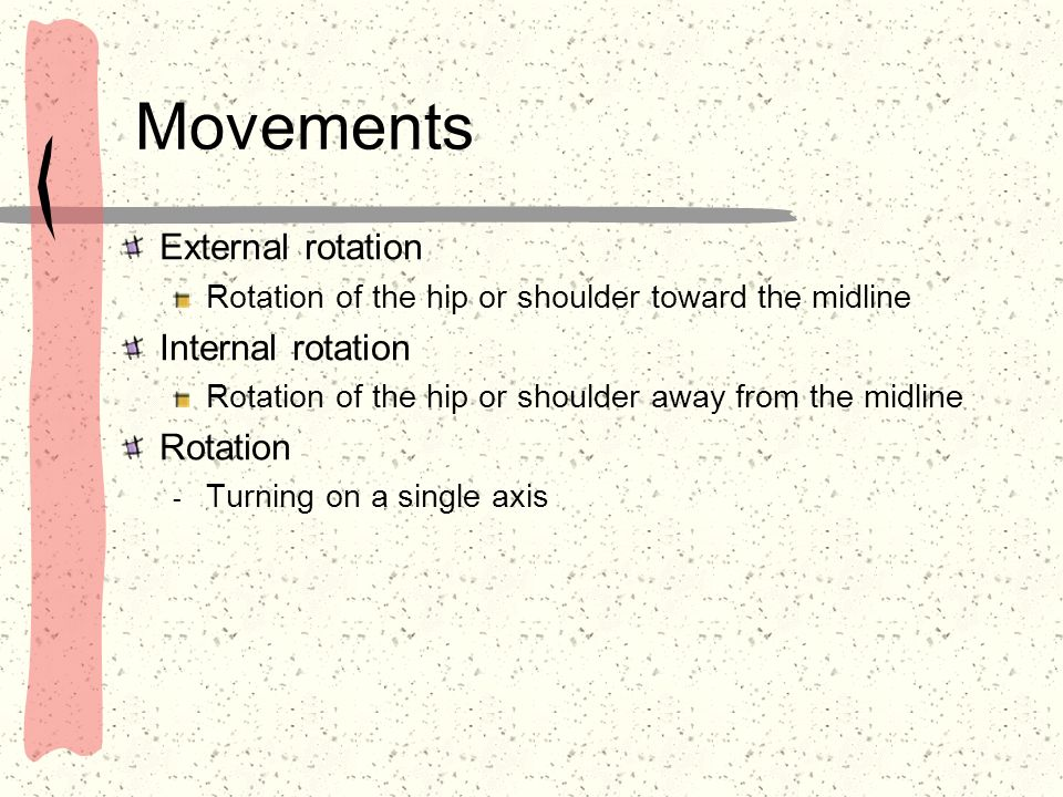 Movements External rotation Rotation of the hip or shoulder toward the midline Internal rotation Rotation of the hip or shoulder away from the midline