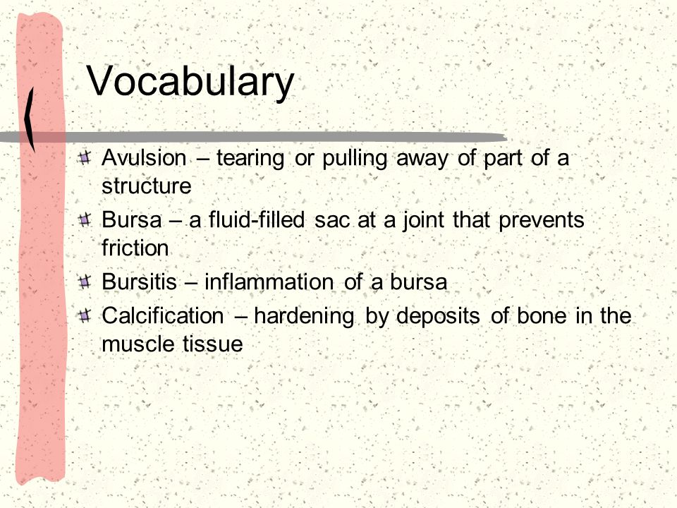 Vocabulary Avulsion – tearing or pulling away of part of a structure Bursa – a fluid-filled sac at a joint that prevents friction Bursitis – inflammat