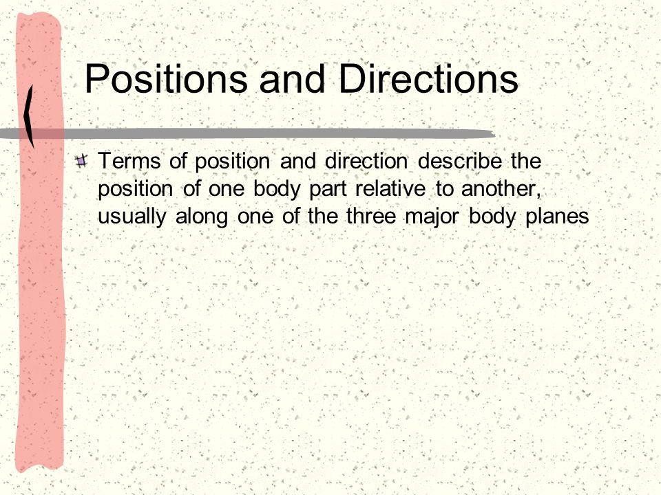Positions and Directions Terms of position and direction describe the position of one body part relative to another, usually along one of the three ma