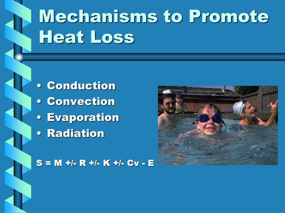 Mechanisms to Promote Heat Loss ConductionConduction ConvectionConvection EvaporationEvaporation RadiationRadiation S = M +/- R +/- K +/- Cv - E