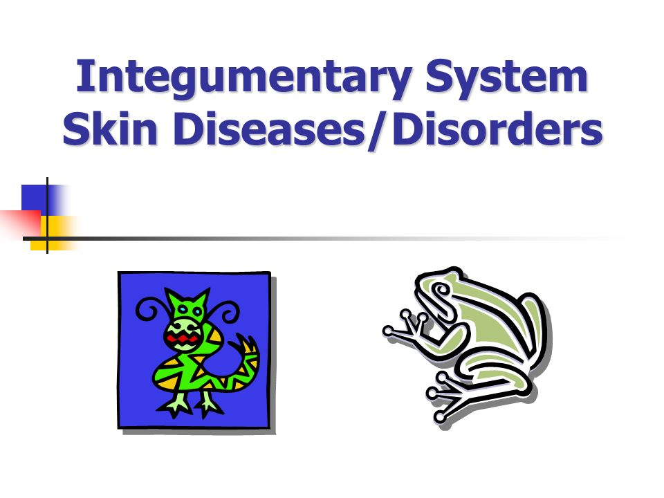 Integumentary System Skin Diseases/Disorders Integumentary System Skin Diseases/Disorders