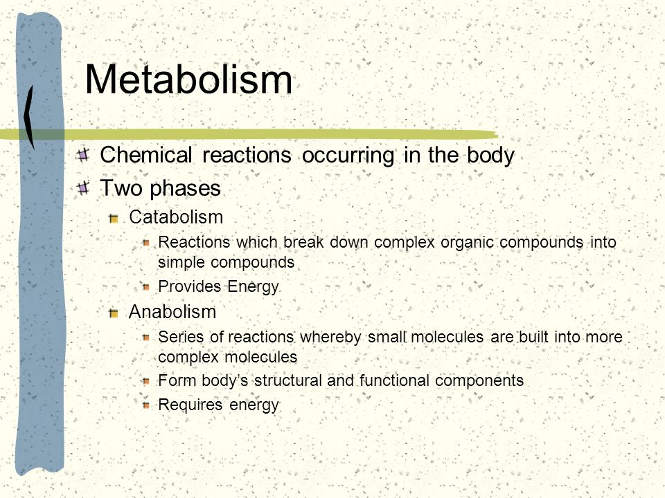 Metabolism Chemical reactions occurring in the body Two phases Catabolism Reactions which break down complex organic compounds into simple compounds P
