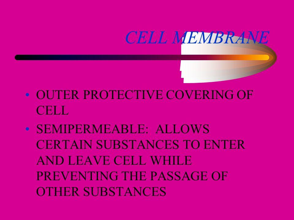 CELLS BASIC PARTS