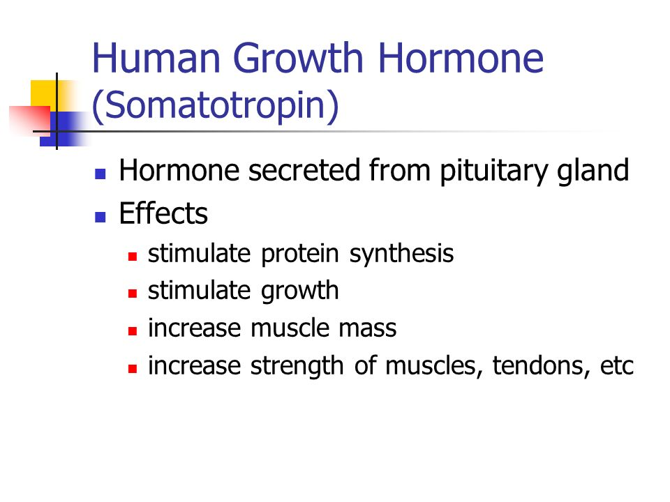 Human Growth Hormone (Somatotropin) Hormone secreted from pituitary gland Effects stimulate protein synthesis stimulate growth increase muscle mass increase strength of muscles, tendons, etc