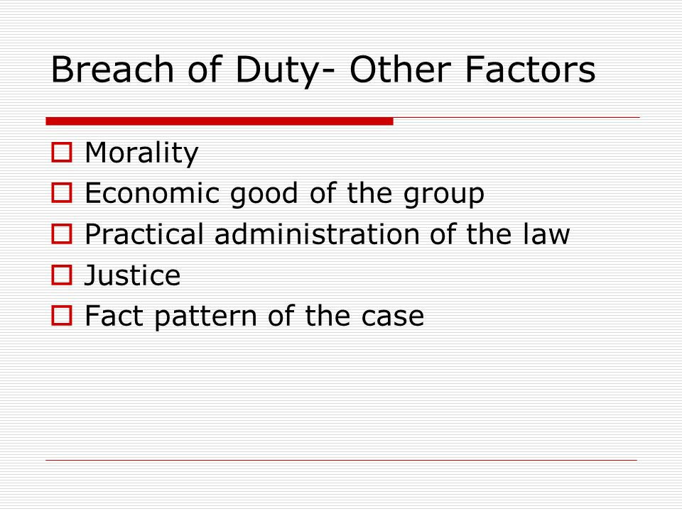 Breach of Duty- Other Factors Morality Economic good of the group Practical administration of the law Justice Fact pattern of the case